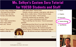 Ms. Selkye's Custom Sora Tutorial for YUESD Students and Staff